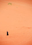 Man walking in the desert Royalty Free Stock Photography