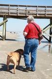 Man walking dog. Baby boomer man walking dog on beach Royalty Free Stock Photo