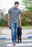 Man walking with dog Stock Photo
