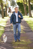 Man Walking Dog In Autumn Park Royalty Free Stock Image