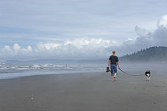 Man walking Dog on Beach Royalty Free Stock Photography