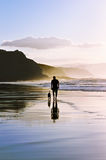 Man walking the dog on beach Stock Image