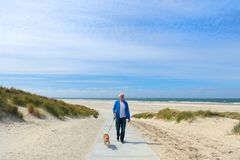 Man with dog in landscape beach stock photo