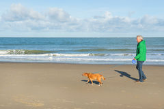 Man walking with dog at the beach Stock Images