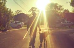 Man walking dog Royalty Free Stock Photos