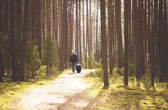 Man walking with dog in forest Stock Image