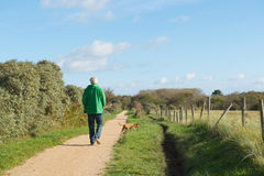 Man walking dog in nature Royalty Free Stock Photo