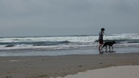 Man walking dog near ocean, misty day. Young male walking dog along seashore stock footage