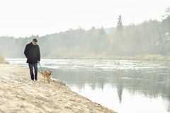 Man walking with dog near the river Stock Images
