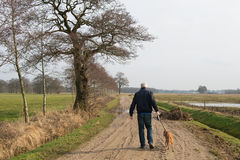 Man walking the dog Royalty Free Stock Images