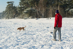 Man walking with dog in snow Stock Photography