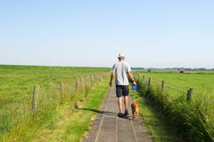 Man walking the dog in summer landscape Stock Photography
