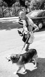 A man walking with a dog and wine in the city of Kotor in June 2 Royalty Free Stock Image