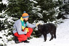 Man walking with dog winter time with snow in forest. royalty free stock photography