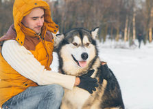 Man walking with dog winter time with snow in forest Malamute an Royalty Free Stock Image