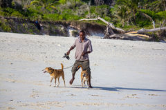 Man walking dogs on the beach Royalty Free Stock Images