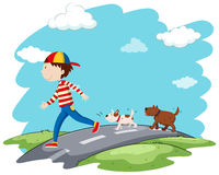 Man walking dogs on the street Stock Image
