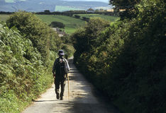 Man walking down a country lane Royalty Free Stock Photography