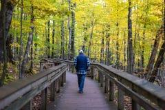Man walking down hiking path in autumn stock photos