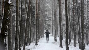 Man walking down the road in a snowy forest stock video footage