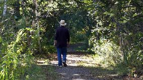 Man walking down a tree lined path stock footage
