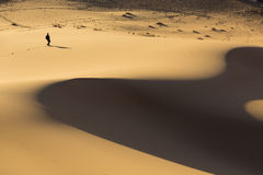 Man walking on dunes in desert Royalty Free Stock Images