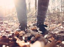 Man walking in fallen leaves Royalty Free Stock Photography