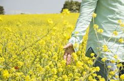 Man is Walking in Field Stock Photo