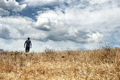 Man walking in a field Stock Photography