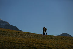 Man walking on the field Royalty Free Stock Image