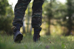 Man walking in the forest Stock Images