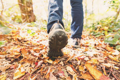 Man walking on a forest path. In autumn Stock Photo