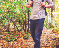 Man walking on a forest path. In autumn Royalty Free Stock Image