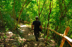 Man walking on forrest trail Stock Image
