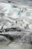 A Man walking on a Glacier. A Bird on a Glacier Royalty Free Stock Photos