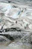 A Man walking on a Glacier. A Bird on a Glacier royalty free stock photos
