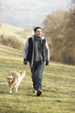 Man walking golden retriever in the country Royalty Free Stock Image