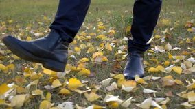 Man walking on ground covered with yellow fallen leaves during autumn season. Man walking on a dirt ground covered with yellow fallen leaves during autumn stock video footage