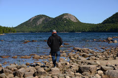 Man walking or hiking through Acadia National Park in Maine Royalty Free Stock Photo