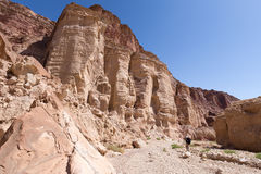 Man walking hiking deep desert canyon. Man backpacker hiking inside deep desert gorge canyon dry  riverbed, between huge red rock cliffs, Negev desert, Israel Stock Photography