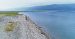 Man walking with his dog near lakeside 4k. Man walking with his dog near lakeside at countryside 4k stock footage