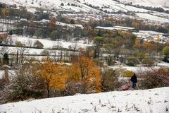 Dog Walker Snow England UK. A man walking his dog in snow , England Royalty Free Stock Images