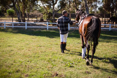 Man walking with horse in the ranch Stock Photography