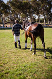 Man walking with horse in the ranch Stock Photos