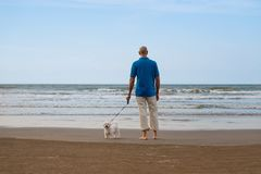 Man walking with maltese dog and looking to sea. On the beach Royalty Free Stock Photos