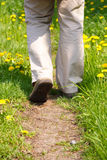 Man Walking In Meadow. Flower way Royalty Free Stock Photography