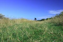 Man walking in open field Stock Image