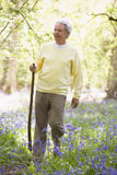 Man walking outdoors with walking stick smiling Stock Photo