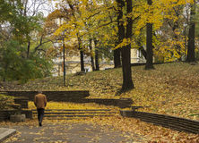 Man walking over dead leaves on park in autumn in Sofia. Man walking over dead leaves in autumn in Sofia Stock Photography