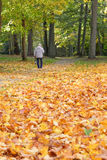 Man walking in park stock image